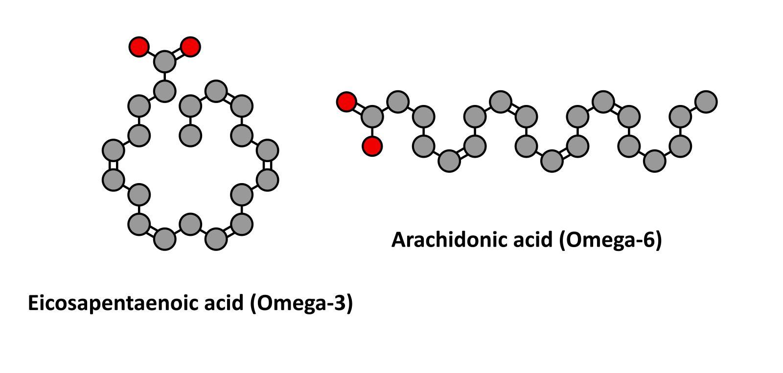 omega 3 og 6